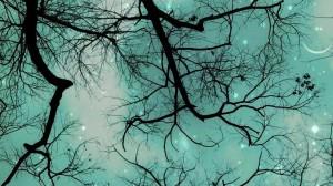 EquinoxTrees